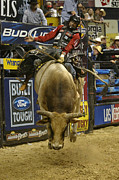 Bull Riders Prints - Rodeo 16 Print by Don Olea