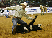 Bull Riders Photos - Rodeo 6 by Don Olea