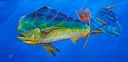 Sailfish Drawings Posters - Rodeo Clown Poster by Johnny Widmer