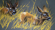 Hunting Pastels Prints - Roe Deer Print by Angel  Tarantella