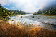 Fall River Scenes Posters - Rogue River Poster by Debra and Dave Vanderlaan