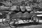 Wagon Photos - Roll Out The Barrels by Mel Steinhauer