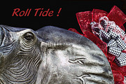 Bear Bryant Metal Prints - Roll Tide - 14 Time National Champions Metal Print by Kathy Clark