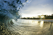 Photography Surf Framed Prints - Rolled Gold Framed Print by Sean Davey