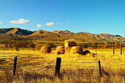 Fence Line Prints - Rolled Hay Near Durkee Oregon Print by Jeff  Swan