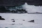 Qing  - Rollin on the Ocean