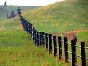 Ramona Johnston - Rolling Fence