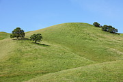 Old Country Roads Photos - Rolling Hills Landscape of The Black Diamond Mines in Antioch California 5D22279 by Wingsdomain Art and Photography