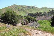Old Country Roads Prints - Rolling Hills Landscape of The Black Diamond Mines in Antioch California 5D22292 Print by Wingsdomain Art and Photography