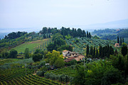 Rolling Hills Vinyards Prints - Rolling Hills of Tuscany Print by Jim Jones