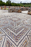 Elaborate Prints - Roman Mosaics Print by Lusoimages