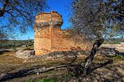 Nigel Hamer - Roman Temple at Milreu Portugal