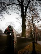 Nick Ruxandu - Romanescu park - Romania