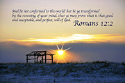 Drying Rack Framed Prints - Romans chapter 12 verse2 Framed Print by Arlene Rhoda Nanouk