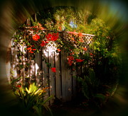 Bougainvilleas Prints - Romantic Hideaway in Key West Print by Susanne Van Hulst