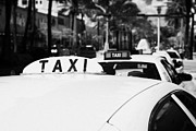Yellow Taxis Framed Prints - Rooftop Taxi Sign On Cab In Row Of Yellow Cab Taxis In Miami South Beach Florida Framed Print by Joe Fox