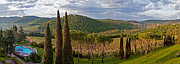 Chianti Vines Prints - Room With A View Print by Adrian Alford