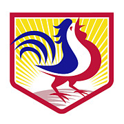 Crowing Posters - Rooster Cockerel Crowing Crest Poster by Aloysius Patrimonio