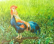 Ross Daniel Paintings - Rooster in grass by Ross Daniel