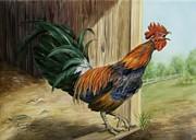 Rooster Print by Summer Celeste
