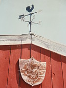 Polk County Florida Photos - Rooster Weather Vane by Belinda Lee