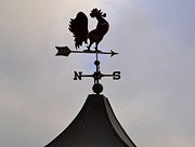 Weather Cock Prints - Rooster Weather Vane Print by Bill Cannon