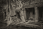 All - Roots in Ruins by Hitendra SINKAR