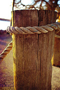 A New Focus Photography - Rope Around the Pile