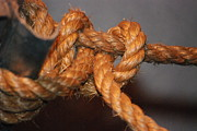 Stopper Photos - Rope Knot by Mark McReynolds
