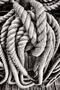 Ropes Photo Prints - Rope Print by Olivier Le Queinec