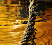 Liquid Gold Prints - Rope on Liquid Gold Print by Kaye Menner