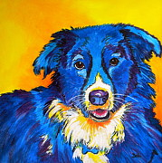 Collie Painting Framed Prints - Rory Framed Print by Debi Pople
