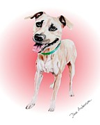 Animal Shelter Drawings - Roscoe - a former shelter sweetie by Dave Anderson