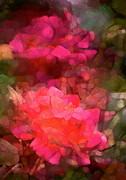 Rose 198 Print by Pamela Cooper