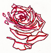 Rose Drawings Prints - Rose 3 Print by Christine Perry