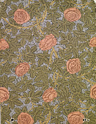 Decor.pink.green Flowers Posters - Rose 93 wallpaper design Poster by William Morris