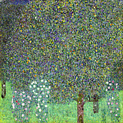 Under The Trees Posters - Rose Bushes Under The Trees Poster by Gustive Klimt