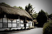 Charming Cottage Photos - Rose Cottage The Square Nether Wallop by Terri  Waters