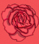 Computer Drawings Prints - Rose Drawing Print by Christine Perry