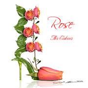 Blanchette Photography Prints - Rose Flos Calceus Print by Blanchette Photography