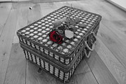 Picnic Hamper Prints - Rose For My Love Print by Ian Broadmore