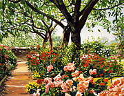 Pathways Painting Framed Prints - Rose Garden Impressions Framed Print by David Lloyd Glover