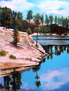Tucson Originals - Rose Lake Sequel 2 by M Diane Bonaparte