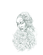 African-american Drawings - Rose of Grace and Kindness by Lydia Erickson
