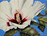 Althea Art - Rose of Sharon by Karen Beasley