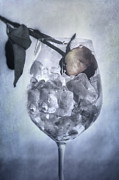 Ice Wine Art - Rose On The Rocks by Joana Kruse