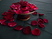 Terry Cobb - Rose petals and pottery