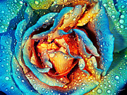 Russ Brown Art - Rose revisited by Russ Brown