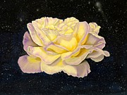 Blooming Paintings - Rose stars by Zulfiya Stromberg