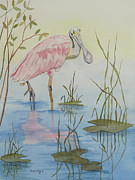 John Edebohls - Roseate Spoonbill